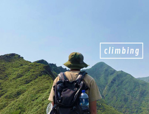 來場與大自然的約會吧!特搜雙北五處私房登山步道,一起當個陽光囝仔